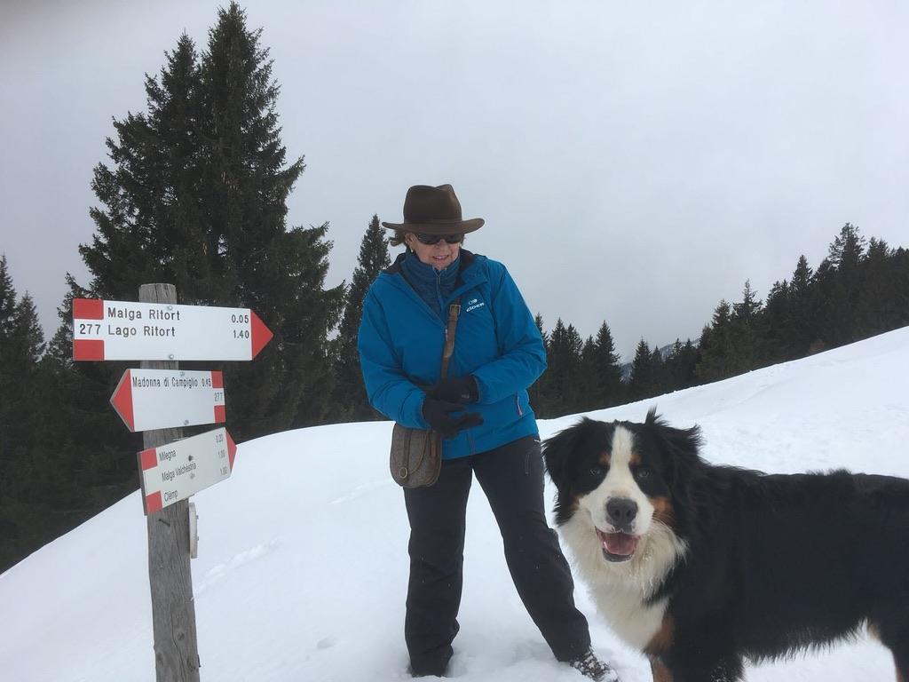 Sulla neve con il cane